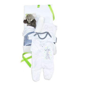 Premium unisex baby gift box items