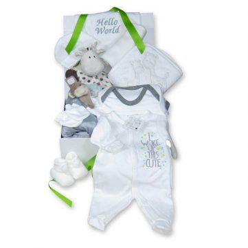 Premium plus unisex baby gift box items