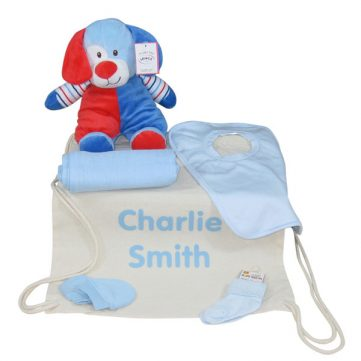 Baby gift bag for boys